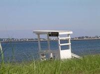 ferrybeachlifguard